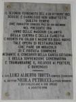 Toro_1913